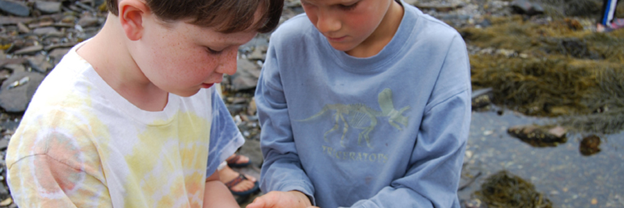 4-H Camp & Learning Centers at Tanglewood & Blueberry Cove